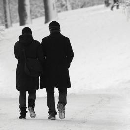 P14-walk-in-the-snow_SMALL-265x265