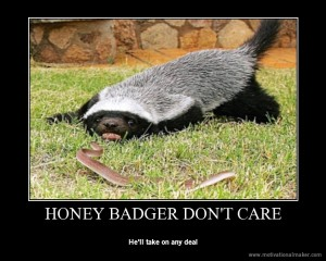 aaa honey badger