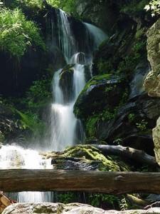 aaa falls
