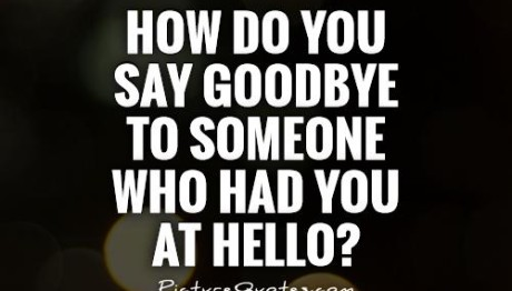 how-do-you-say-goodbye-to-someone-who-had-you-at-hello-quote-1