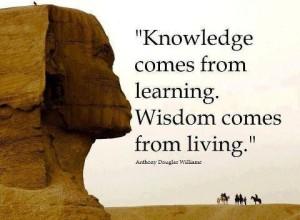 aaa wisdom quote